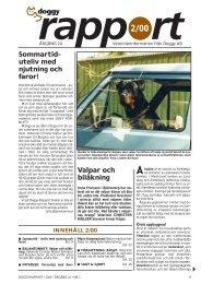 Valpar och bilåkning - Doggy Rapport