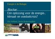 Biochar: één oplossing voor de energie-, klimaat- en voedselcrisis?