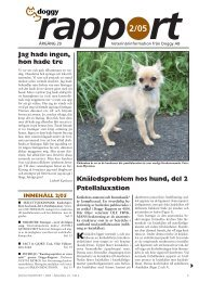Doggy Rapport nr 2