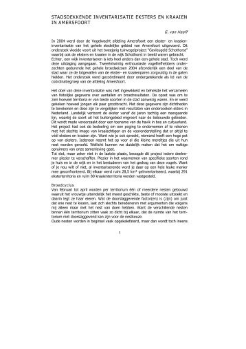stadsdekkende inventarisatie eksters en kraaien in amersfoort