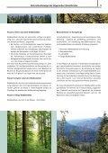 Naturschutzkonzept der Bayerischen Staatsforsten - Bayerische ... - Seite 5