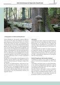 Naturschutzkonzept der Bayerischen Staatsforsten - Bayerische ... - Seite 7