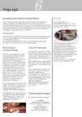 Info 5 november 2004 Web - Gemeente Diepenbeek - Page 7
