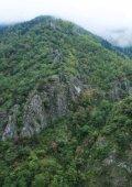 Kaçkar Dağları Sürdürülebilir Orman Kullanımı ve Koruma Projesi - Page 6