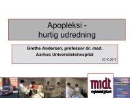 29.10.12 Grethe Andersens oplæg - Hjernesagen