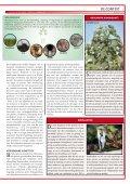 Biomassa - Chemische Feitelijkheden - Page 3