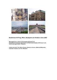 Elevernas rapporter 2007 (pdf, 1,2 MB, nytt fönster) - Västerås stad