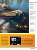 fokus - DIGITAL FOTO för alla - Page 6