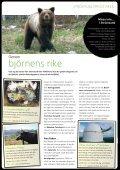 Vildmarksvägen broschyr (pdf-19MB) - Wilderness Road - Page 4