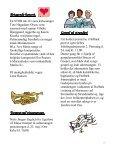 Nr. 3 maj – juni 2010 19. årg. - Orø Kirke - Page 7