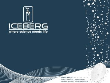 iceberg labs powerpoint presentation - Iceberg Laboratories, LLC