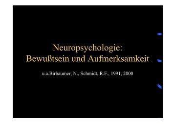 Neuropsychologie: Bewußtsein und Aufmerksamkeit