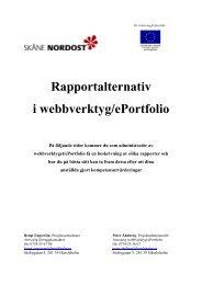 Beskrivning av rapportalternativ