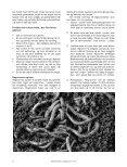 Indhold: - Foreningen for Biodynamisk Jordbrug - Page 4