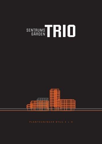 Prosjektbeskrivelse - Sentrumsgården Trio