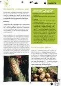 hier - Jong Groen - Page 5