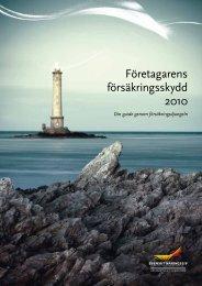 Företagarens försäkringsskydd 2010 - Eio