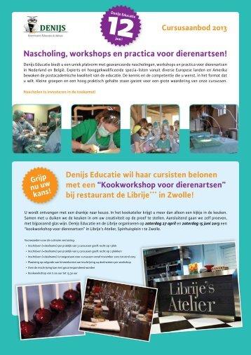 Nascholing, workshops en practica voor ... - Denijs Educatie