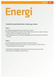 Lærervejledning til Energi - Grønt Flag - Grøn Skole