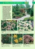 Min hage - Gartnerringen - Page 4