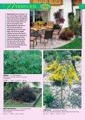 Min hage - Gartnerringen - Page 7