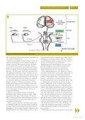 Optikeren del 1 - Nakkeskadd - Page 5