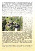 Onze vogels en hun vruchten, fruit en bessen - Tuinbedrijf Erik Wevers - Page 4