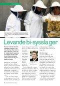 Stockholmshemmet - Bee Urban - Page 4