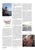 TEMA HAVET - Igenom - Page 5