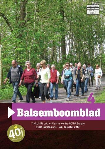 Balsemboomblad - Dienstencentra Brugge