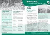 Nieuwsbrief nr 1 2011 - Dorpsraad Heerjansdam