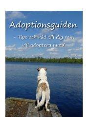 Adoptionsguiden - Dingochamp