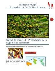 Carnet de Voyage A la recherche de l'Or Vert à Lamas ... - Alter Eco