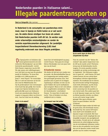 Illegale paardentransporten op - Dierenbescherming