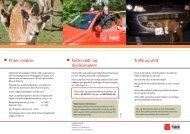 brochure om trafik og vildt - Falck