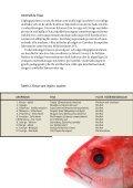Folder: Den flamsäkra fisken - Naturskyddsföreningen - Page 5