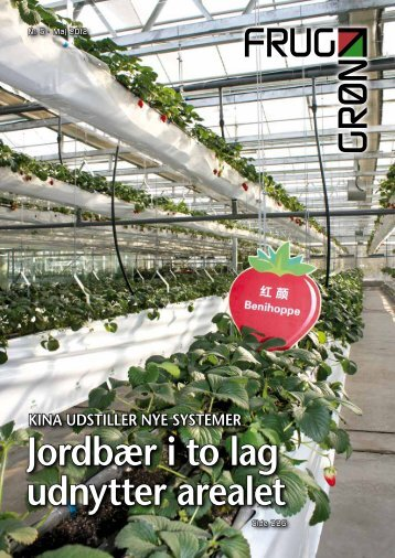 Jordbær i to lag udnytter arealet - Gartneribladene