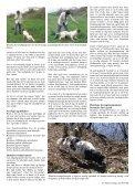 Avlens mysterier - Kennel Fuglevig - Page 2