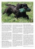Avlens mysterier - Kennel Fuglevig - Page 3