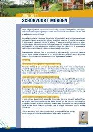 SCHORVOORT MORGEN - Stad Turnhout