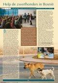 Wij staan klaar voor alle dieren! - Stichting Menodi - Page 5
