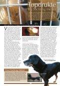 Wij staan klaar voor alle dieren! - Stichting Menodi - Page 6