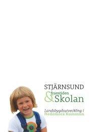 Stjärnsund, framtiden och skolan: Landsbygdsutveckling i ...