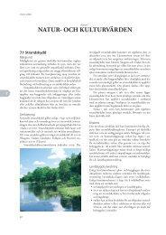 Översiktsplan Vision 2020 Kapitel 7 - Gullspångs kommun