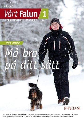 Vårt Falun nr 1, 2013 (pdf 2,5 MB) - Falu Kommun
