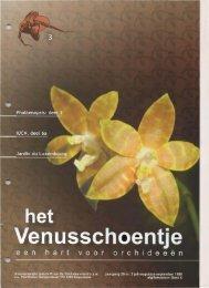 1999 - 3 - Orchideeën Vereniging Vlaanderen