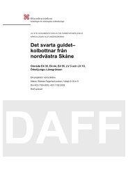 UV Syd, Daff 2004:9 - Riksantikvarieämbetet, avdelningen för ...