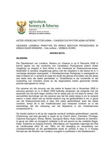aster vergeling fitoplasma – candidatus phytoplasma ... - PlantSA