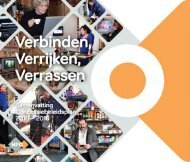 Samenvatting | Concessiebeleidsplan - NPO
