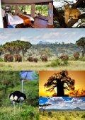 Hent brochure for Safari i Kenya - Jysk Rejsebureau - Page 3